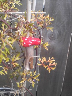 Ceramic Large Hanging Garden Toadstool